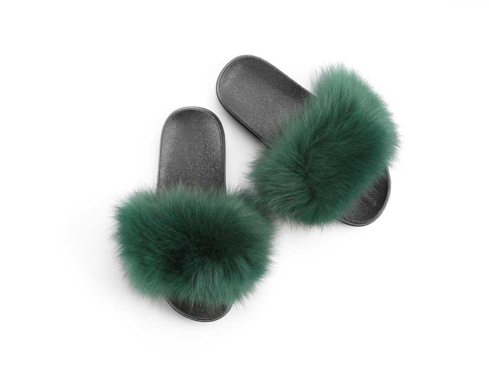 overhead image of slippers